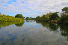 étang en Sologne