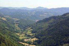 paysage vallée des Vosges